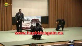 Tribute Hapkido Moo Hak Kwan Spain