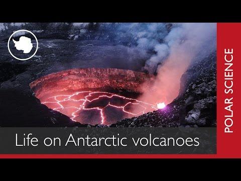 Life on Antarctic Volcanoes