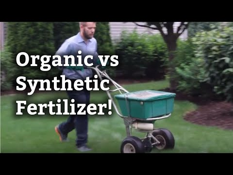 Differences Between Organic and Synthetic Fertilizer l Expert Lawn Care Tips