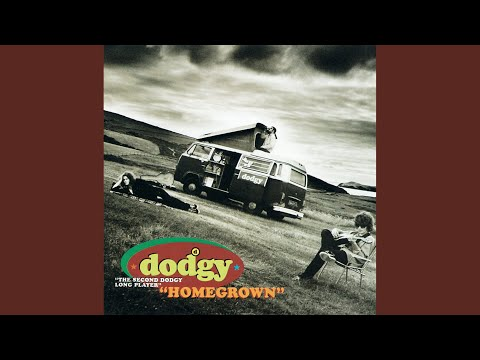 dodgy we are together