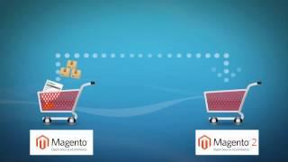 How to Migrate Magento 1 to Magento 2