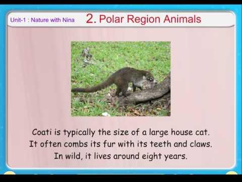 G.K  -   Polar Region Animals