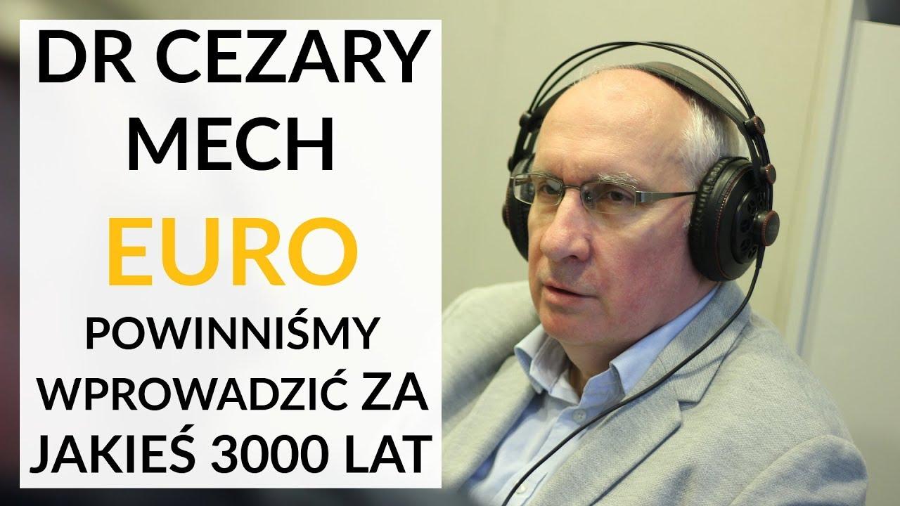Dr Mech: Euro powinniśmy wprowadzić za jakiejś 3000 lat