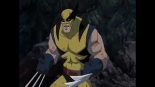 Hulk vs Wolverine (Song by Skillet- Monster)
