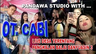 OT CABI LIVE DESA TERENTANG PANGKALAN BALAI BANYUASIN 3
