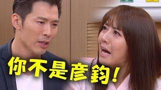 【金家好媳婦】EP153 芷琳錯亂崩潰!踢爆假彥鈞身分