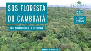 SOS Floresta do Camboatá e mais notícias socioambientais  - VERDE MAR AO VIVO #47