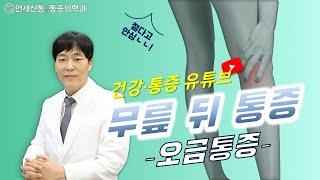 오금이 아파요 '무릎 뒤쪽 통증'의 신박한 원인 분석,…