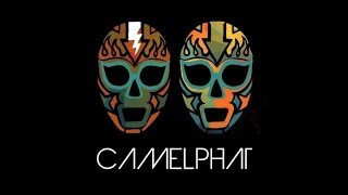 CamelPhat Live from Boardmasters Festival