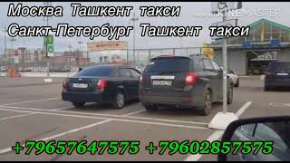 Москва-Ташкент такси