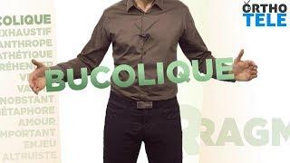 Décortiquons le mot « Bucolique » - Orthodidacte.com
