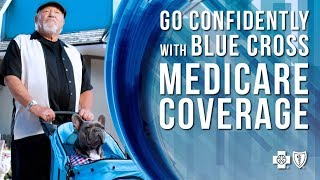 Blue Cross Blue Cross Blue Shield - BerkshireRegion