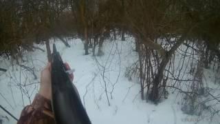 Охота на косулю Волгоградская область