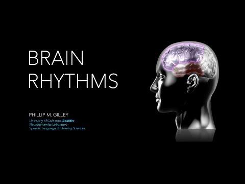 Brain Rhythms: Functional Brain Networks Mediated by Oscillatory Neural Coupling
