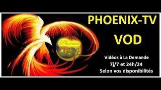 COURS EN LIGNE DE TAEKWONDO, HAPKIDO et SELF-DEFENSE : PHOENIX TV VOD !