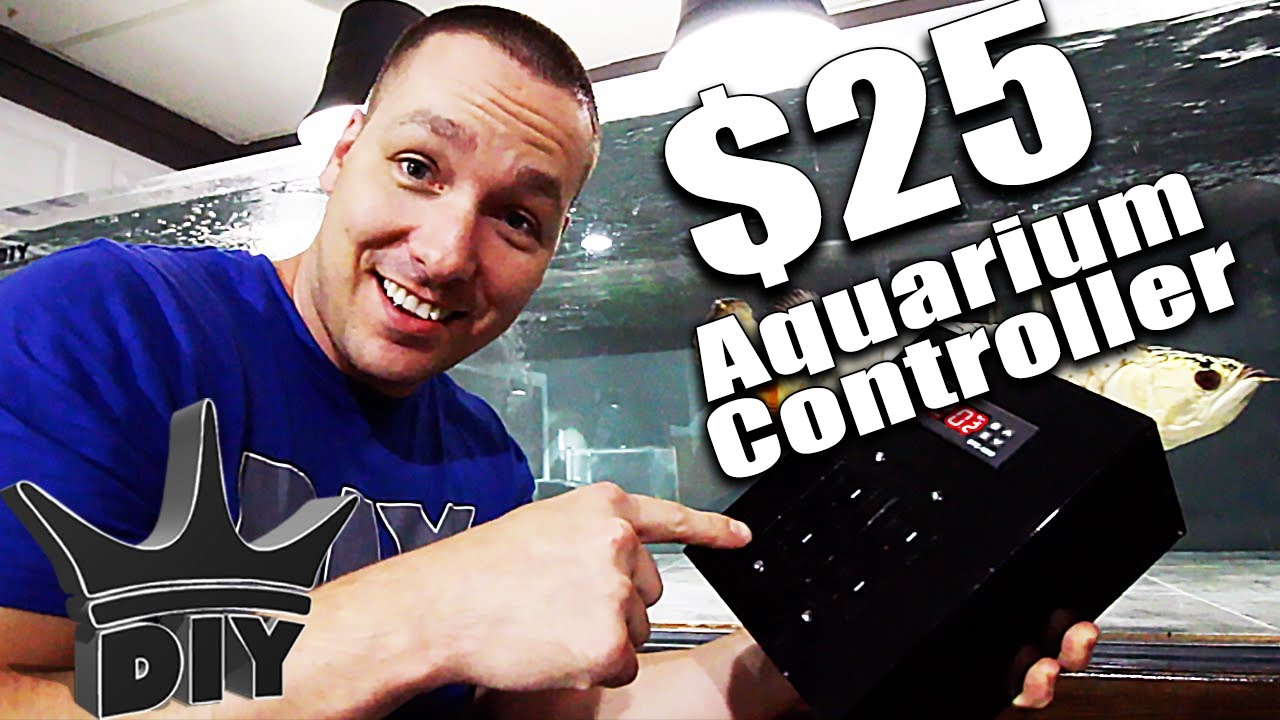 Diy Aquarium Heater Controller Youtube How To Wire An Stc1000 Temperature With 2 Heaters Reefing