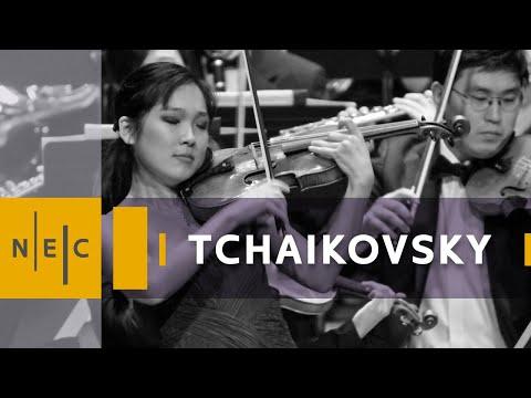 Tchaikovsky Violin Concerto [1/2]