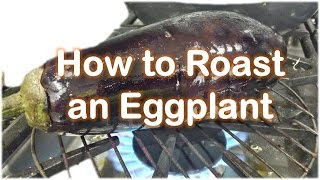 How to Roast an Eggplant on stove   Fire by RinkusRasoi