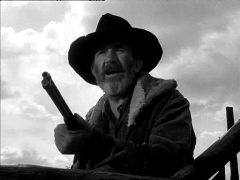 Image result for my darling clementine walter brennan