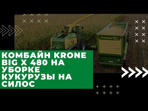 "Работа комбайна KRONE BiG X 480 на уборке кукурузы на силос в ОАО ""Спорово""."