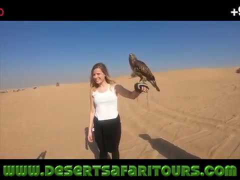 sunrise desert safari tours Dubai with camel trekking