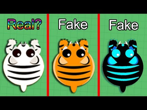 Mope.io WHITE TIGER *REAL OR FAKE?* Mythbusters - Rare Animal? Trolling Wins +Fails Mope.io Gameplay