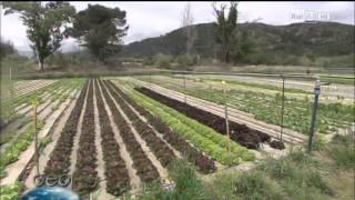 Lombricoltura Compagnoni @ Geo&Geo (RaiTre) - 19/05/14