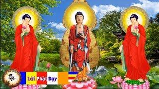 Nghe Kinh Này Hằng ngày trước khi ngủ tạo Phúc Đức Cho Con Cháu - Tụng Kinh Phật giáo