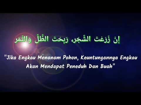 Kata Kata Bijak Islami Buat Status Wa Nusagates