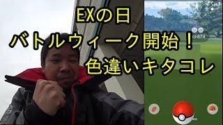 【ポケモンGO】EXの日にバトルウィーク開始!いきなり色違いキタコレ!
