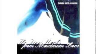 Album from THRASH JAZZ ASSASSIN (1997)