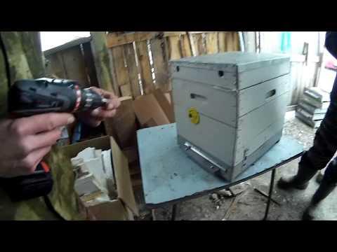 Заносим пчел в зимовник