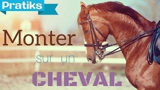 Dressage  - Comment monter à cheval ? Sport - Equitation