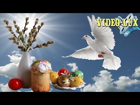 ❤ Нежное поздравление с Вербным Воскресеньем! ❤ Видео открытка - Лучшие видео поздравления в ютубе (в высоком качестве)!