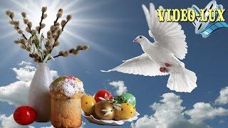 ❤ Нежное поздравление с Вербным Воскресеньем! ❤ Видео открытка
