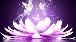 3 Hour Reiki Healing Music: Meditation Music, Calming Music, Relaxing Music, Soft Music ☯2628