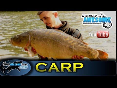 Carp fishing bite time episode 1 tafishing show for Fishing bite times
