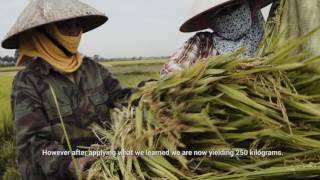 Transforming Cooperatives and Farmers' Lives - Viet Nam