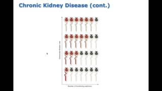 Chapter 26 Acute Kidney Injury and Chronic Kidney Disease BIO216