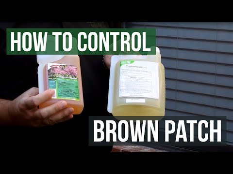 How to Control Brown Patch Fungus with Honor Guard PPZ Fungicide (Propiconazole)