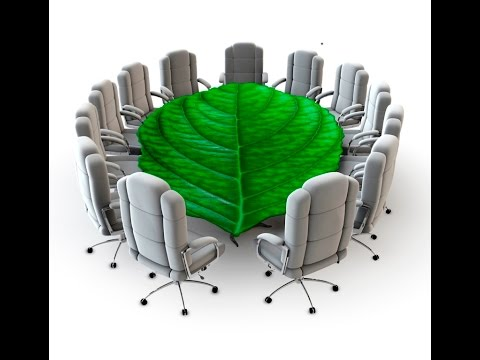Assessing Attitudes Toward Sustainability Via A Focus Group