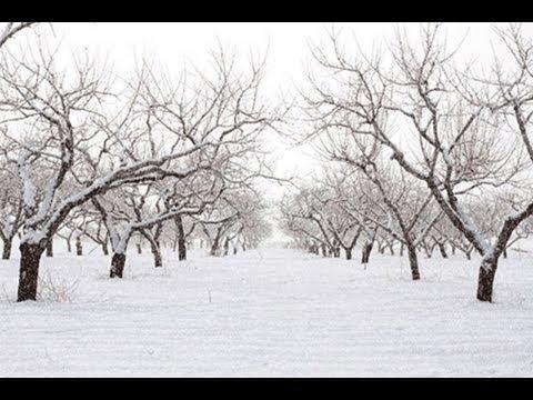 идущий снег фотошоп онлайн