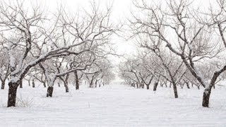 Анимация снега в Фотошопе(GIF Анимация снега в Photoshop CS5 + как сохранить анимацию (в конце видео). Photoshop CS5 от А до Я - http://photoshop-master.org/c/2351..., 2012-11-14T16:16:44.000Z)