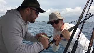 #24 Рибальство у водах Майамі. Відпустку і ніякого дальнобоя