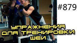 Упражнения для тренировки шеи на объем и силу. Как накачать мышцы шеи дома или в зале.