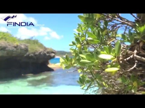 FindiaGroup | New Caledonia