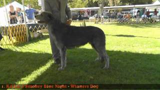 Northern California Irish Wolfhound Club Specialty 2012 - Dog Results