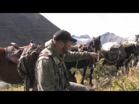 SOA Elk Hunting In British Columbia