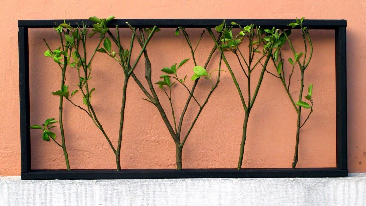 Un hermoso marco de madera con ramas de rboles youtube - Paredes con marcos de fotos ...