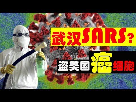 武汉SARS疫情疑云,香港103万人元旦大游行!党国专家袜子藏21瓶美国癌细胞样本被抓!(老北京茶馆/第223集/2020/01/03)